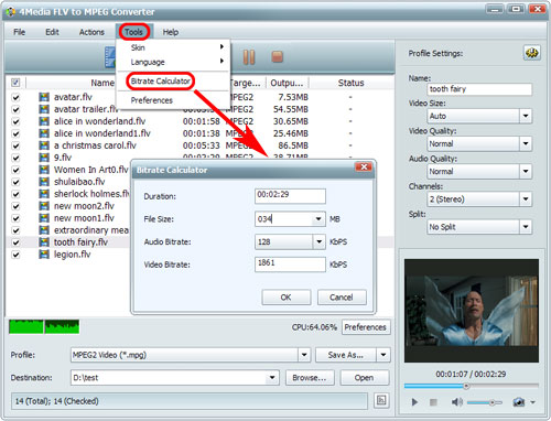 Convert FLV to MPEG format