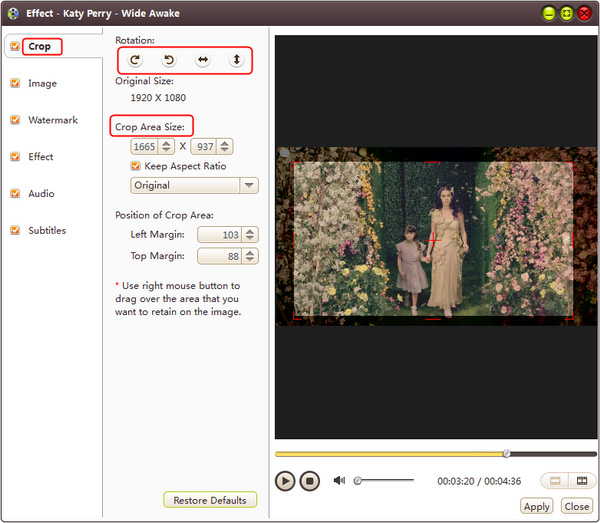 AVI MPEG WMV video converting